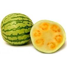 Champagne Melon