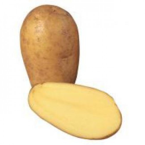 Charlotts Potato